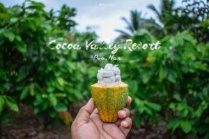 ไร่โกโก้ ที่ Cocoa Valley